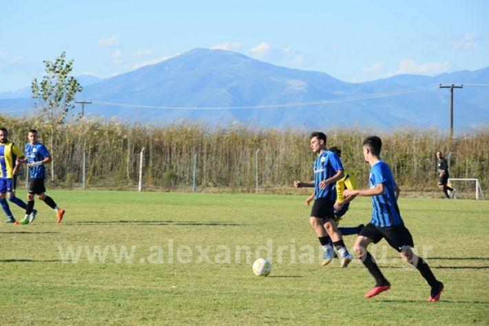 www.alexandriamou.gr_lsxoinasDSC_0149