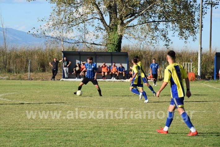 www.alexandriamou.gr_lsxoinasDSC_0150