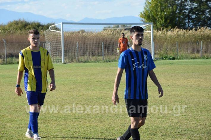 www.alexandriamou.gr_lsxoinasDSC_0163