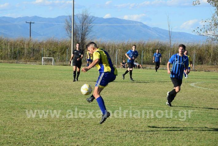 www.alexandriamou.gr_lsxoinasDSC_0186