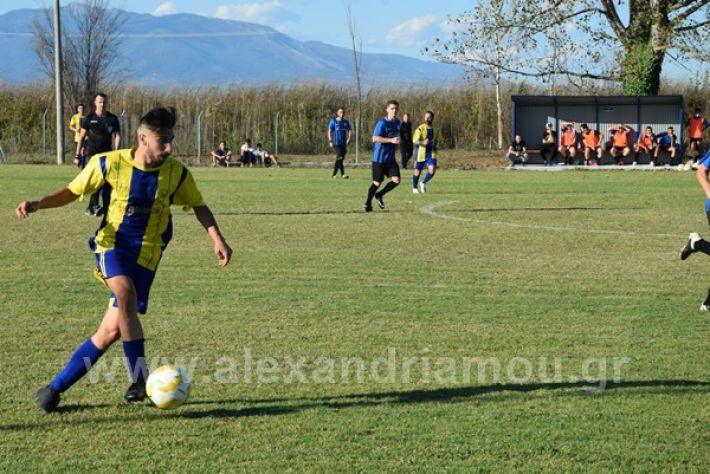 www.alexandriamou.gr_lsxoinasDSC_0188