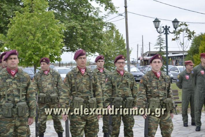 alexandriamou_SAS-TEAS_PARADOSI_DIOIKHSHS031