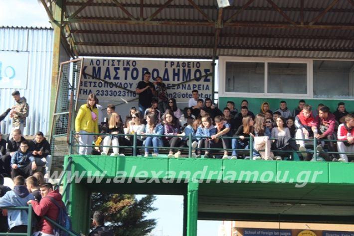 alexandriamou.gr_sxolikosagonasepal2o032