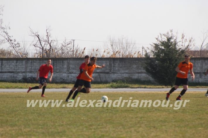 alexandriamou.gr_sxolikosagonasepal2o163