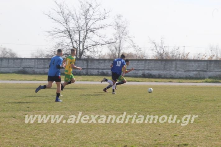 alexandriamou.gr_sxolikosagonaskorifi2o007
