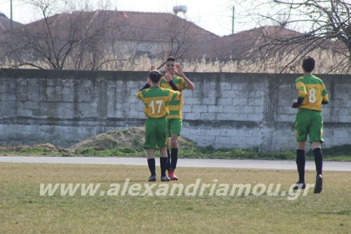 alexandriamou.gr_sxolikosagonaskorifi2o068