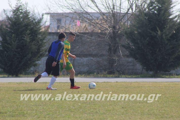 alexandriamou.gr_sxolikosagonaskorifi2o084