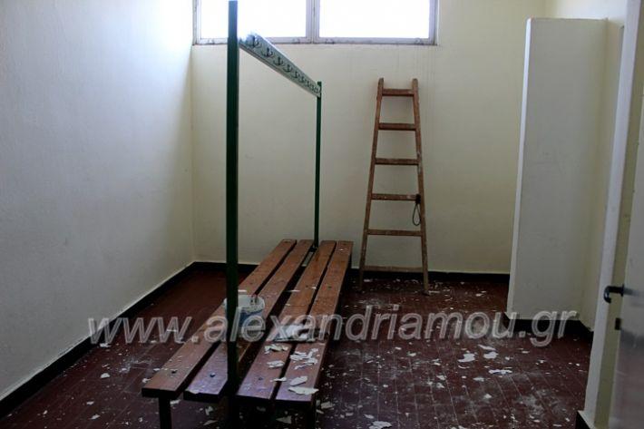 alexandriamou.gr_tartan22.9.20IMG_0334