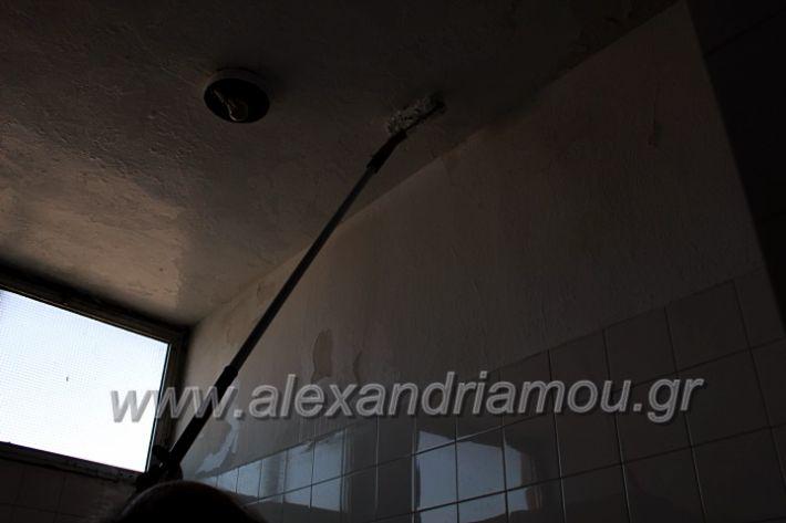 alexandriamou.gr_tartan22.9.20IMG_0337