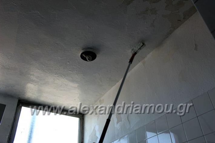 alexandriamou.gr_tartan22.9.20IMG_0339