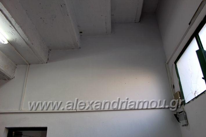 alexandriamou.gr_tartan22.9.20IMG_0363
