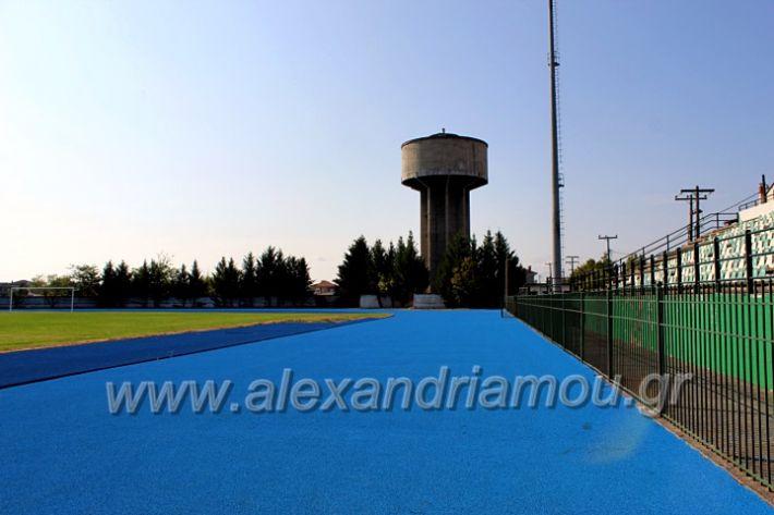 alexandriamou.gr_tartan22.9.20IMG_0365