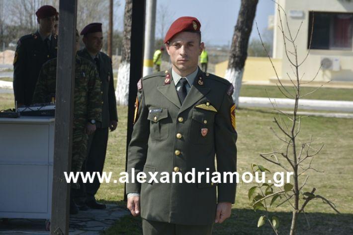 alexandriamou.gr_teas19.3.19110