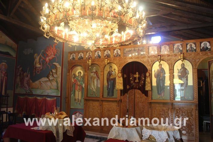alexandriamou.gr_teasprofitisilias2019001