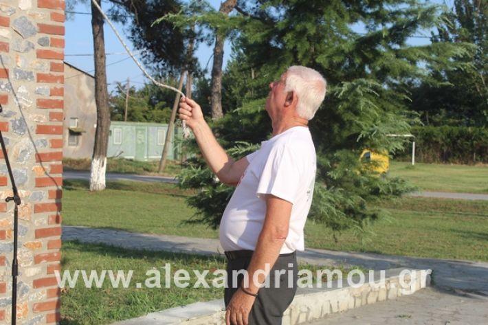 alexandriamou.gr_teasprofitisilias2019016