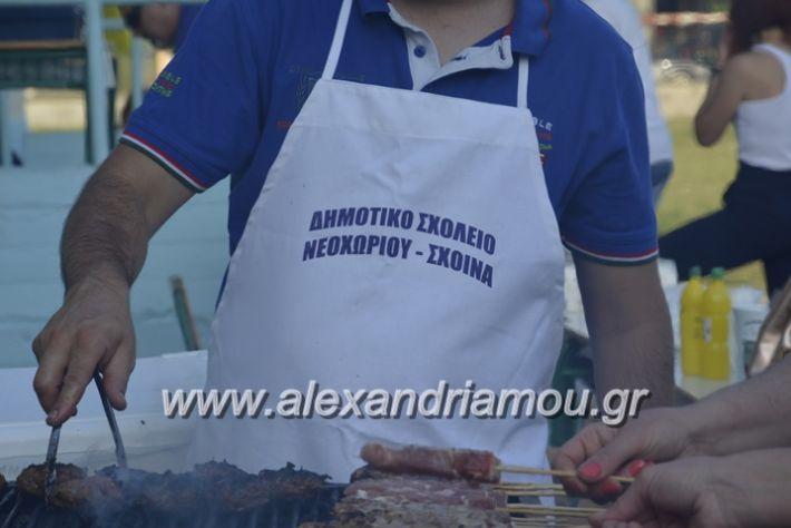 alexandriamou.gr_dim_sxoleio_neoxoriou11.6.2018016