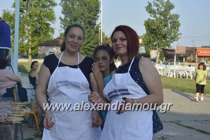 alexandriamou.gr_dim_sxoleio_neoxoriou11.6.2018017