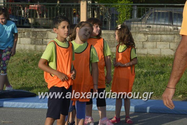 alexandriamou.gr_dim_sxoleio_neoxoriou11.6.2018041