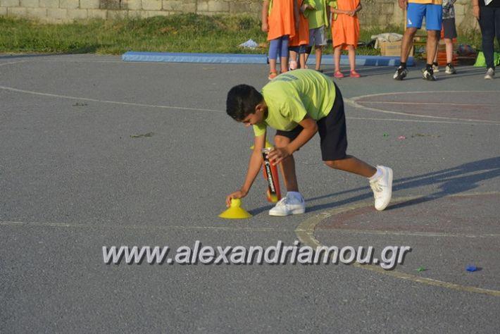 alexandriamou.gr_dim_sxoleio_neoxoriou11.6.2018069