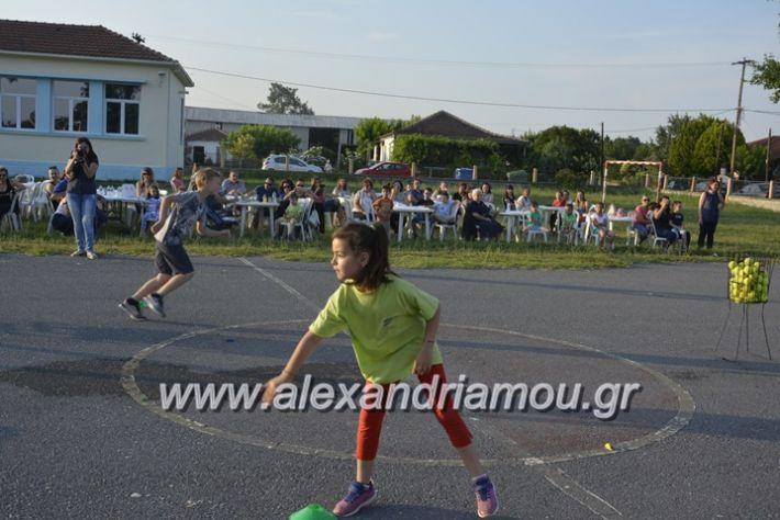 alexandriamou.gr_dim_sxoleio_neoxoriou11.6.2018080