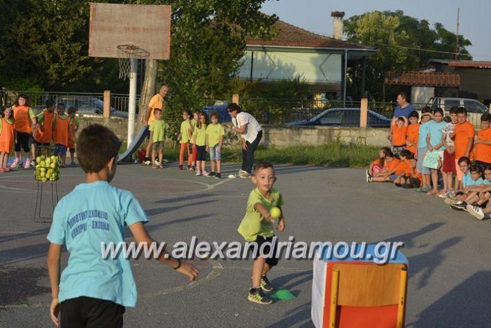 alexandriamou.gr_dim_sxoleio_neoxoriou11.6.2018082