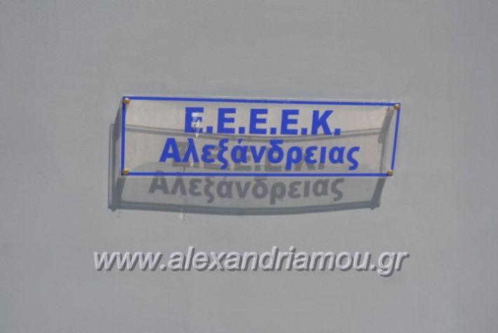 alexandriamou_teligiannidispaidiaanoiksis2019001