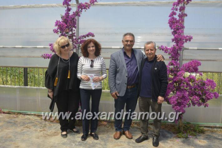 alexandriamou_teligiannidispaidiaanoiksis2019067