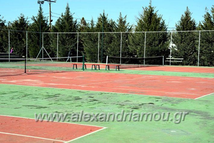alexandriamou.gr_tenispita20DSC_0741