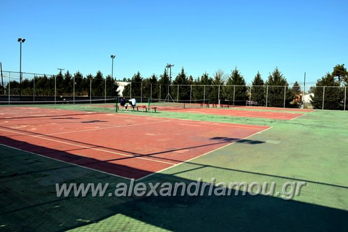 alexandriamou.gr_tenispita20DSC_0742