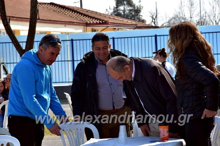 alexandriamou.gr_tenispita20DSC_0749