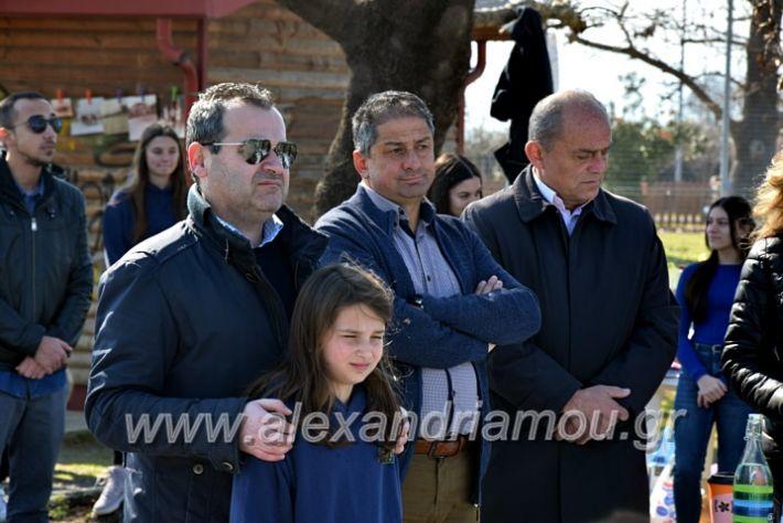 alexandriamou.gr_tenispita20DSC_0771