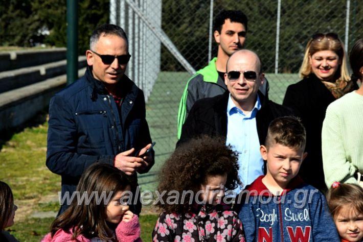 alexandriamou.gr_tenispita20DSC_0797