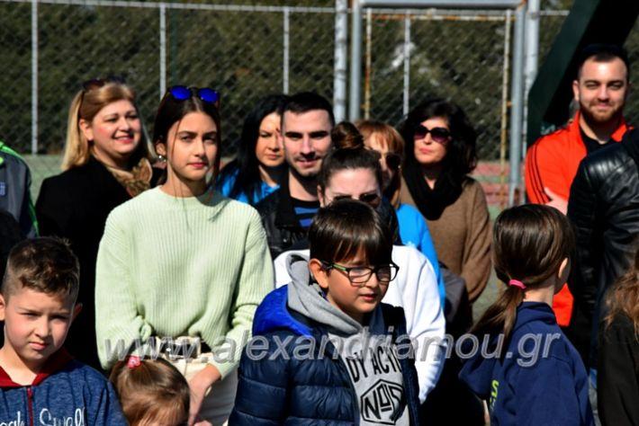 alexandriamou.gr_tenispita20DSC_0798