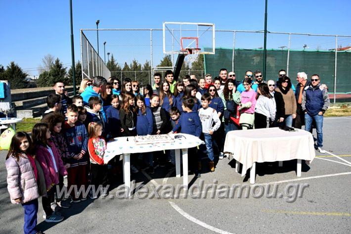 alexandriamou.gr_tenispita20DSC_0842