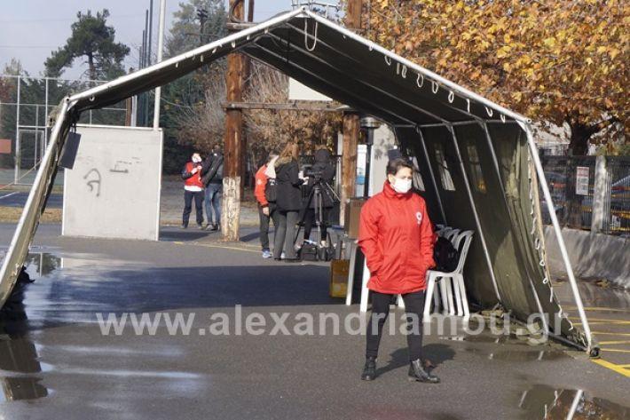www.alexandriamou.gr_testkoronoiou08_DSC9647