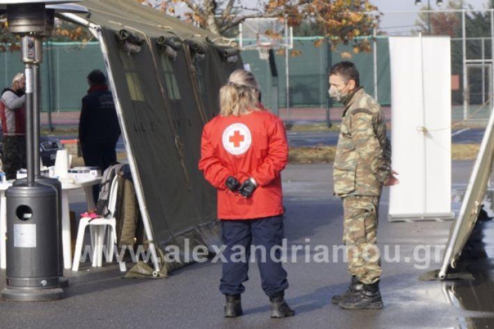 www.alexandriamou.gr_testkoronoiou08_DSC9648
