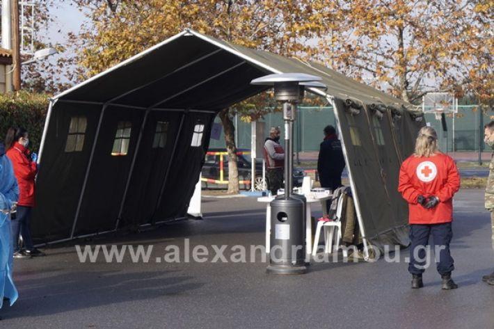 www.alexandriamou.gr_testkoronoiou08_DSC9649