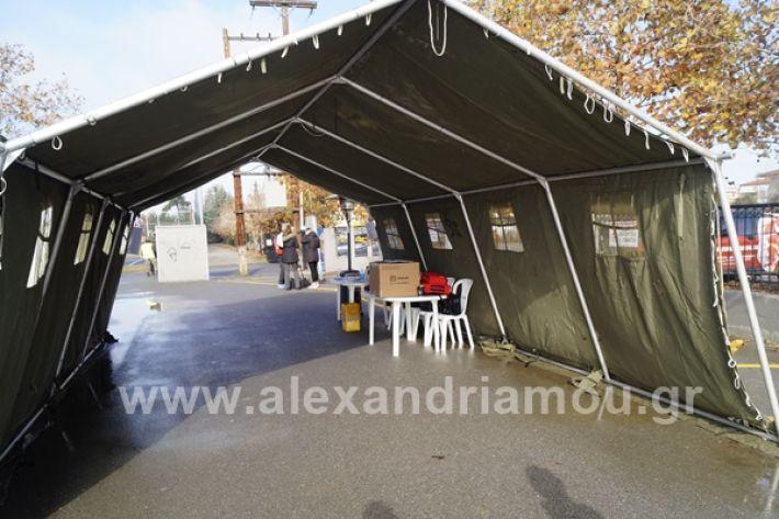 www.alexandriamou.gr_testkoronoiou08_DSC9651