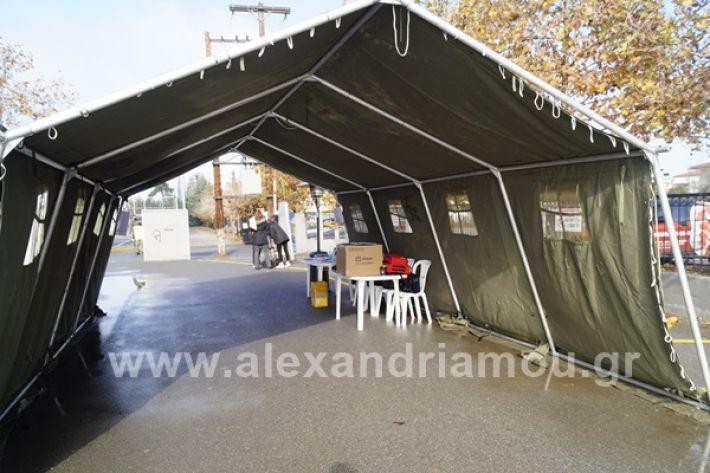 www.alexandriamou.gr_testkoronoiou08_DSC9652
