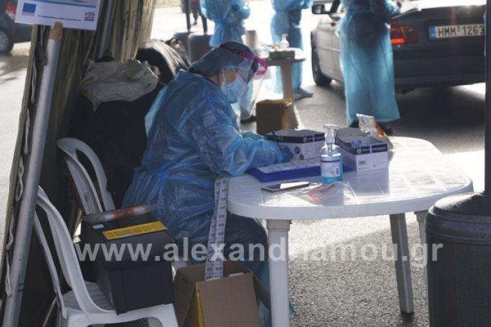 www.alexandriamou.gr_testkoronoiou08_DSC9657