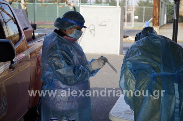 www.alexandriamou.gr_testkoronoiou08_DSC9659