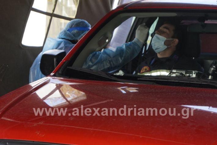 www.alexandriamou.gr_testkoronoiou08_DSC9660