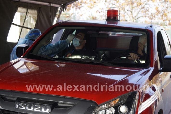www.alexandriamou.gr_testkoronoiou08_DSC9661