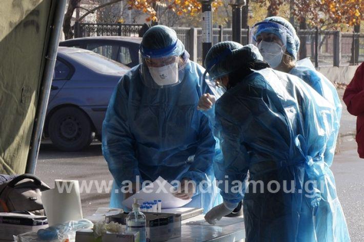 www.alexandriamou.gr_testkoronoiou08_DSC9663