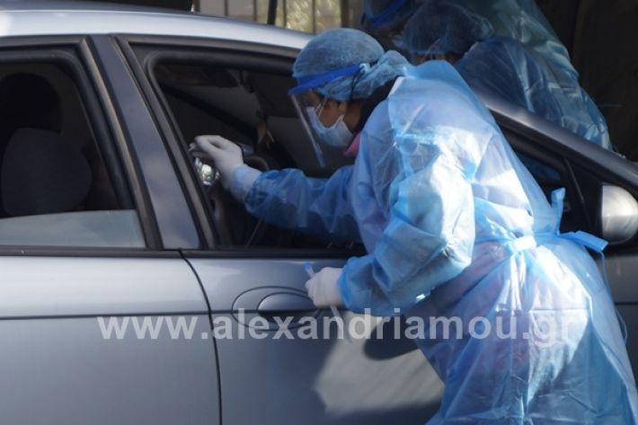 www.alexandriamou.gr_testkoronoiou08_DSC9665