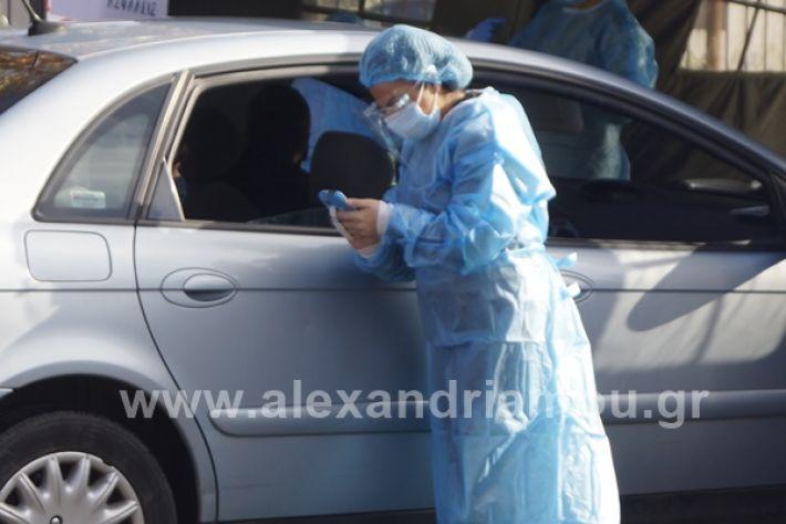 www.alexandriamou.gr_testkoronoiou08_DSC9667