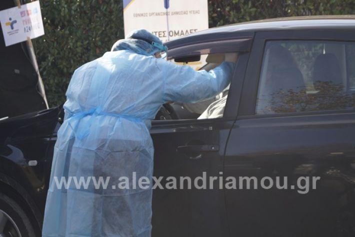 www.alexandriamou.gr_testkoronoiou08_DSC9672