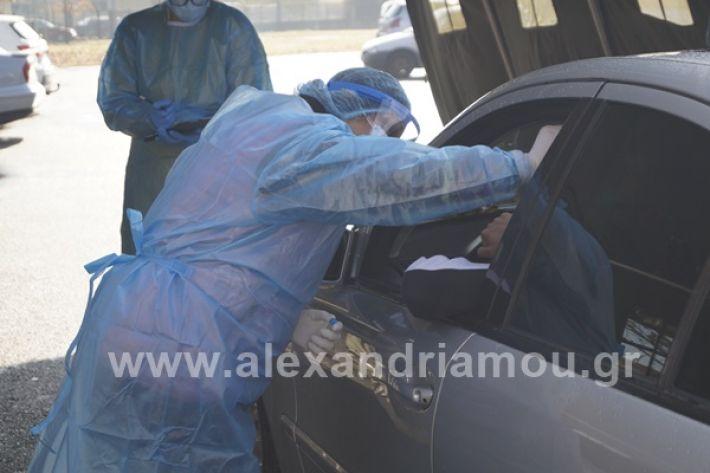www.alexandriamou.gr_testkoronoiou08_DSC9673
