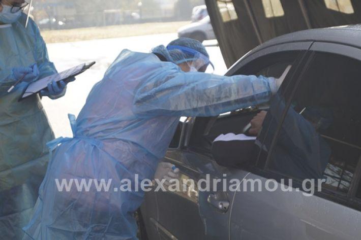 www.alexandriamou.gr_testkoronoiou08_DSC9674