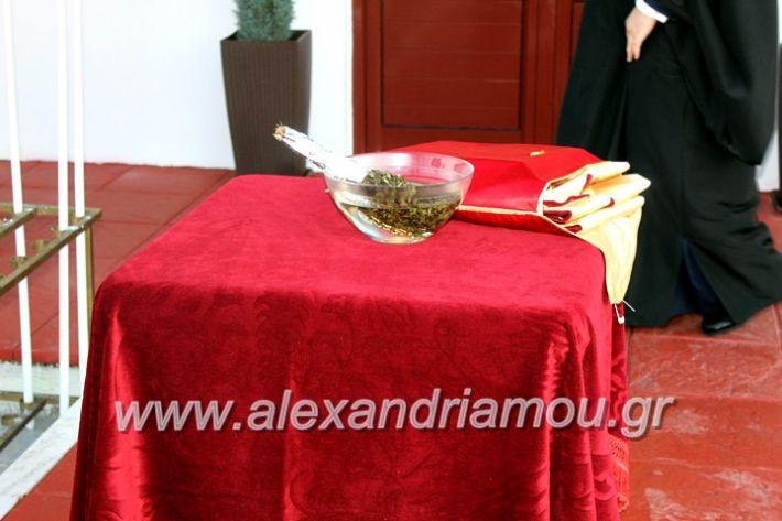 alexandriamou.gr_thiraniksiaagioufaniouriou2019IMG_0801